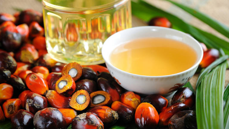 Qué tenemos que saber sobre el aceite de palma